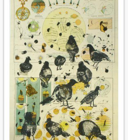 Global Pigeon Sticker