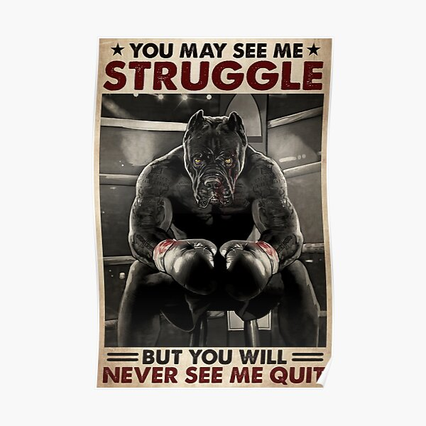 Pitbull boxing you may see me struggle but you will never see me quit Poster