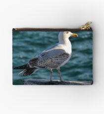 Gulls Rule Okay Studio Pouch