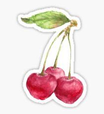 Cherries on a branch Sticker