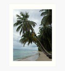 Palm trees on Isla Zapatilla Art Print