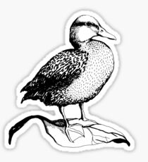 Cute Duck illustration Sticker
