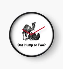 Funny Camels One Hump or Two Clock