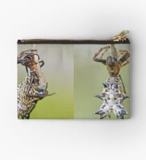 Spined Micrathena Studio Pouch