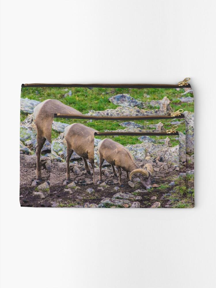 Alternate view of Rocky Mountain Big Horn Sheep Zipper Pouch