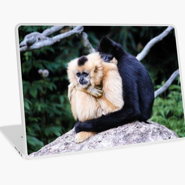 two monkeys Laptop Skin
