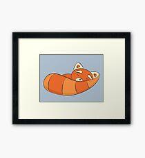 Sleepy Red Panda Framed Print