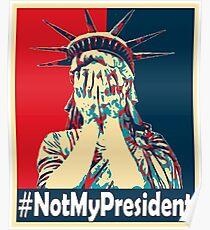 Nicht mein Präsident Poster