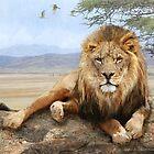 kopje rock-- african lion reclining by R Christopher  Vest
