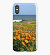Wildflower season at Kabeljoubank  iPhone Case/Skin