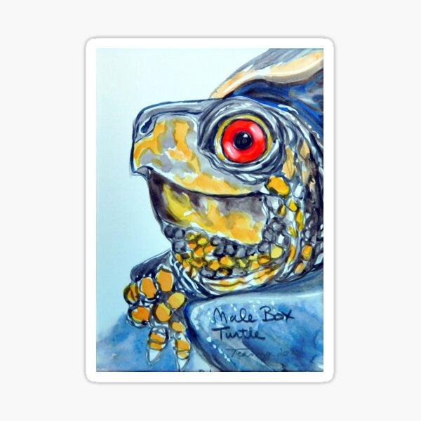 Male box turtle Sticker