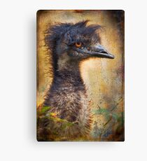 Finer Feathered Friends: Emu Canvas Print