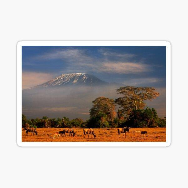 Kilimanjaro Early Morning Light  Amboseli NP Kenya Africa. Sticker