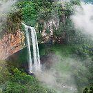 Waterfall in Brazil by Bente Agerup