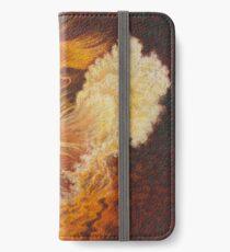 Flamenco iPhone Wallet/Case/Skin