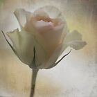 For You by AnnieSnel