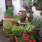 Red Geranium Cottage by L.W. Turek
