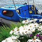 Blue Boat with Daisies by Shulie1