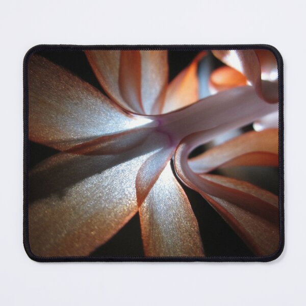 Christmas Cactus in Bloom #2 Mouse Pad