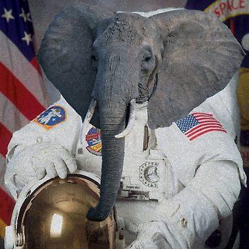 Astronaut Elephant by Gargusuz