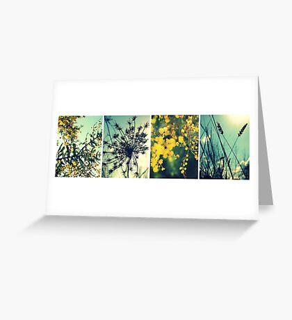 Wander Through Spring Greeting Card