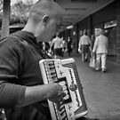 The Accordian Player by Clare Colins