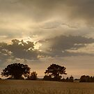 Sundown by Dan Cooke Photography