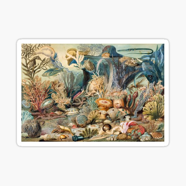 Ocean Life by James M. Sommerville (New color edit) Sticker