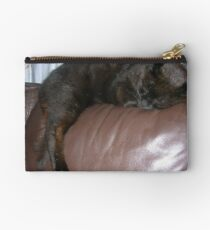 Sleeping Sooty Studio Pouch