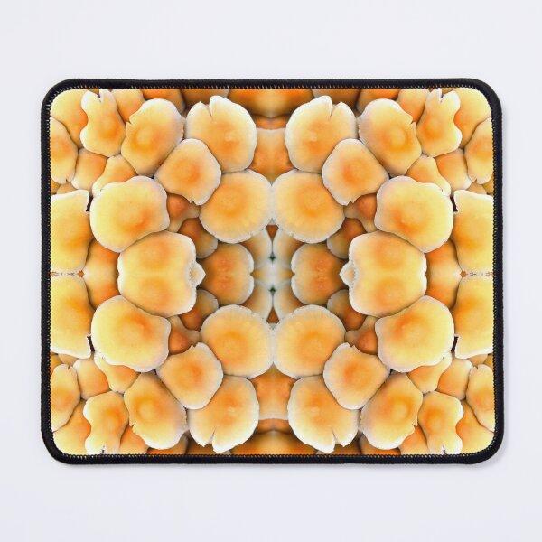 Honey Mushrooms Mouse Pad