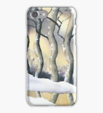 Frozen Forest iPhone Case/Skin