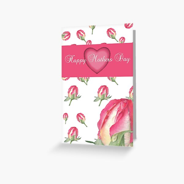 Pink Rose - Morning Dew - Greeting Card 4 Greeting Card