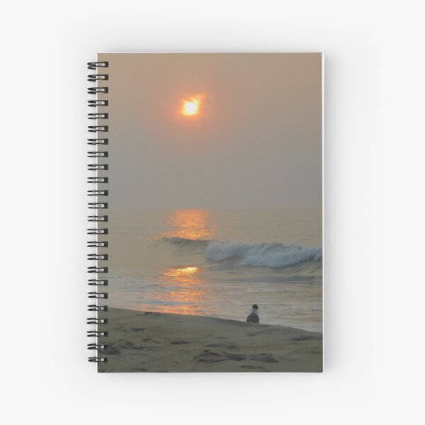 dawn with laughing gull Spiral Notebook