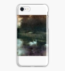 Swans on a pond circa 1910 iPhone Case/Skin