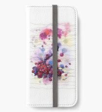 Winter Rowan Berries iPhone Wallet/Case/Skin
