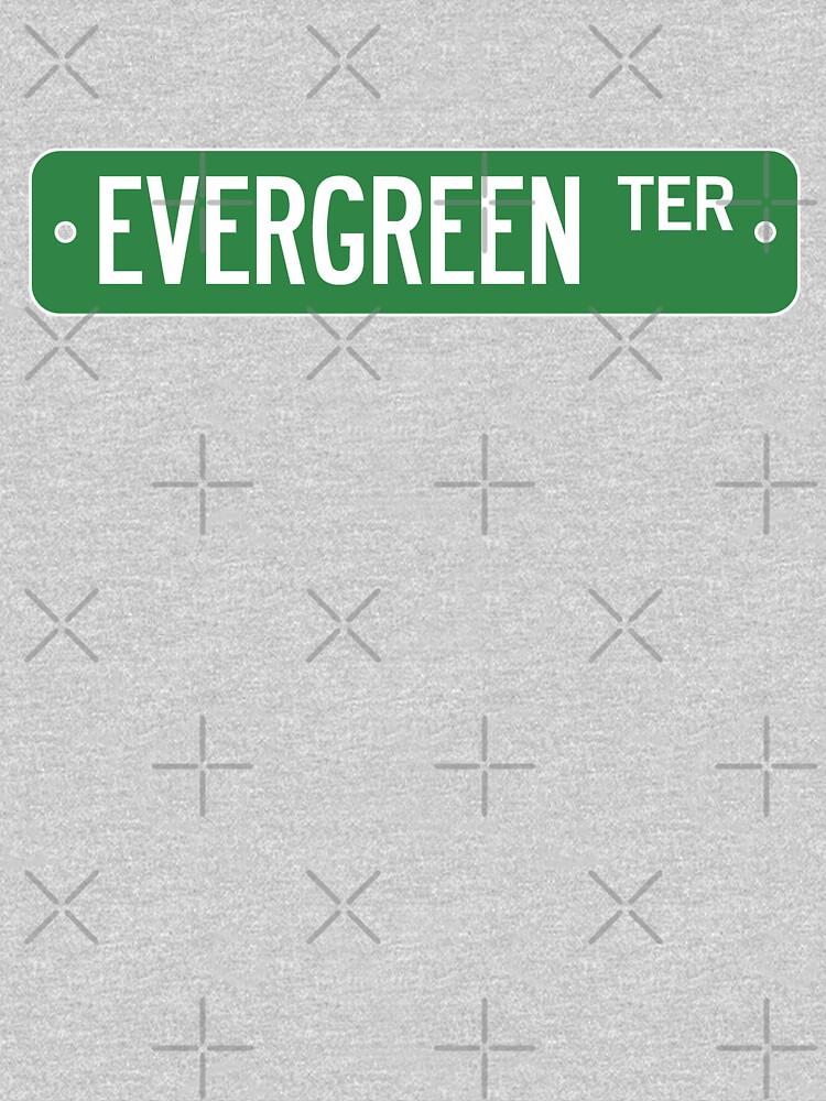 Evergreen Terrace Street Sign (Simpsons) by fandemonium