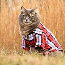 The Flanno by MudMapImages