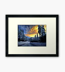 I Have The Blues Framed Print