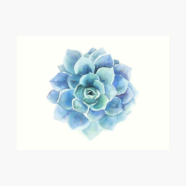 Watercolor blue tones succulent illustration Art Print