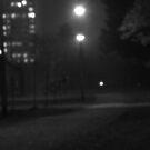 Midnight stroll by MarianBendeth