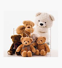 Teddy Bears Photographic Print