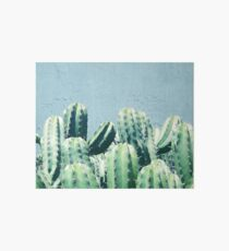 Cactus & Teal #redbubble #lifestyle Art Board
