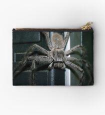 Huntsman Spider Studio Pouch