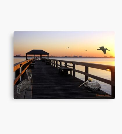 Pelicans on the Pier ~ Indian River Canvas Print
