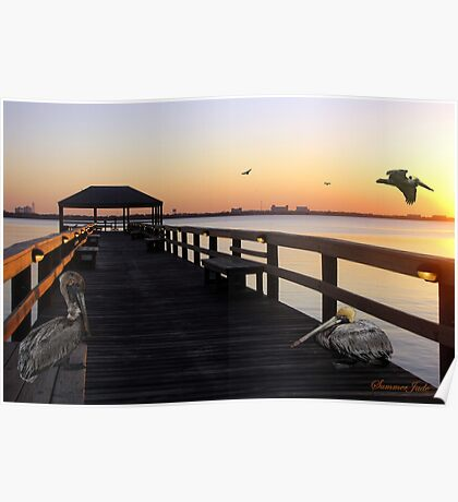 Pelicans on the Pier ~ Indian River Poster