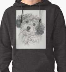 Another Cavachon  Pullover Hoodie