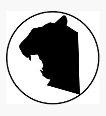 Tiger Silhouette Photographic Print