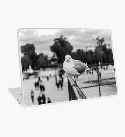 (II) Perched seagull in Jardin des Tuileries, Paris, France Laptop Skin