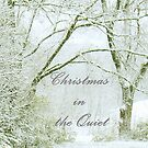 """""""Christmas in the Quiet""""... Christmas Card by Bob Hall©"""