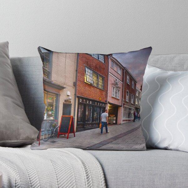 Pottering Along Pottergate Throw Pillow